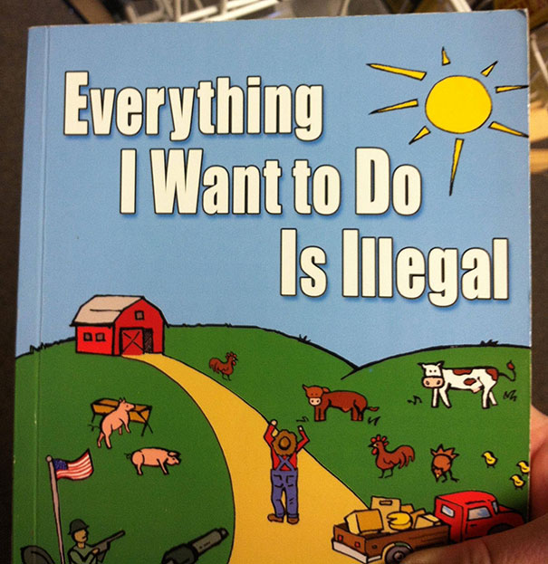 everything illegal book