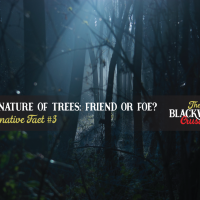 Alternative Fact #3 from 'Blackwood'