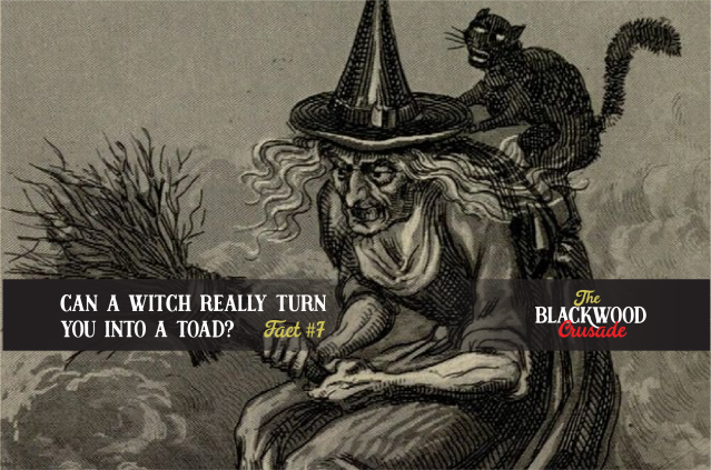 All About Witches from The Blackwood Crusade